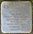 Stolpersteine Köln, Hans Hermann Haimann (Escher Straße 247).jpg