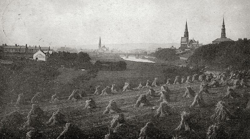 Stooks at Irvine, 1903.jpg