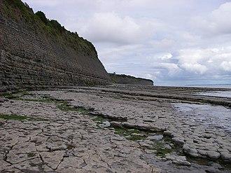 Lavernock - The geology-rich strata of Lavernock cliffs