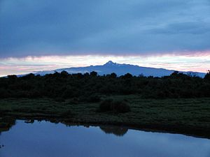 Mount Kenya has a low profile typical of a shield volcano. The central peaks formed the volcanic plug and have since been exposed through glacial erosion.