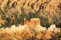 Sunset in the Bryce Canyon.jpg