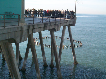 A surfer memorial service, Huntington Beach Pier, Orange County, California.