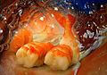 Sushi extravaganza (1471880687).jpg