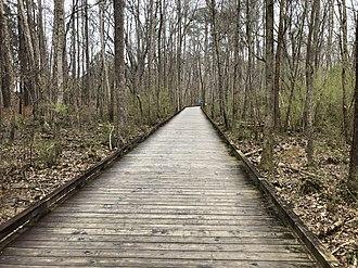Suwanee Creek Greenway - A boardwalk section of the greenway