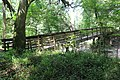 Suwannee River State Park footbridge over Lime Sink Run.jpg