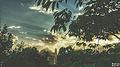 Svln svln4821 ordubad me best top photography resimleri sekilleri photos creative profil maraqli sekil resim fotograflari fotograf ornek resimler (275).JPG
