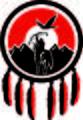 TNG-logo-Pantone485+black.jpg