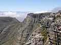 Table Mountain (Nature Reserve), Cape Town, South Africa - panoramio (63).jpg