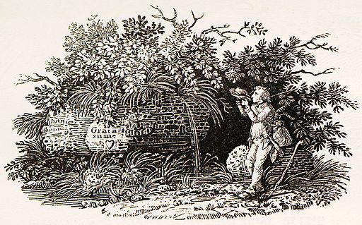 Tail-piece of Bewick as thirsty traveller drinking from his hat