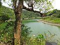 Taiyangpi Lake 太陽埤 - panoramio.jpg