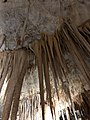Tantanoola Cave Stalagtite straws.jpg