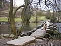 Tarr Steps - an ancient clapper bridge - geograph.org.uk - 35027.jpg