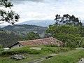Taxopamba Ecuador 1045.jpg