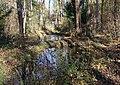 Teich im Schopenhauer Wald Neubiberg-2.jpg