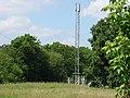 Telephone Mast near M23 Junction 9, Near Burstow, Surrey. - geograph.org.uk - 27735.jpg