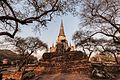 Temples Ruins - Wat Phra Sri Sanphet.jpg