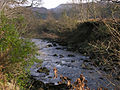 The Afon Ystwyth - geograph.org.uk - 653169.jpg