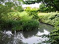The Balancing Pool, Charlton Park - geograph.org.uk - 1122539.jpg