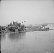 The British Army in North-west Europe 1944-45 B12983.jpg