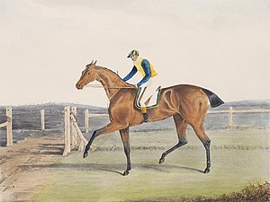 The Duchess (horse) - The Duchess', the Winner of the Great St. Leger at Doncaster, 1816 by John Frederick Herring, Sr.