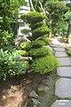 The Japanese garden, Jarków (31763240470).jpg