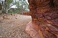 The Ochre Walls at Arkaroola - panoramio.jpg