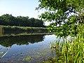 The Pidpisocxne lake - panoramio - Wolodymyr Lavrynenko.jpg