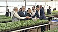 The Prime Minister, Shri Narendra Modi and the Prime Minister of Israel, Mr. Benjamin Netanyahu, at the Centre of Excellence for Vegetables, at Vadrad, in Gujarat on January 17, 2018 (4).jpg
