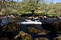 The River Dart (41204577274).jpg