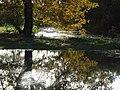 The River Loddon - geograph.org.uk - 287727.jpg