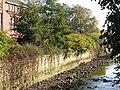 The River Ravensbourne (3) - geograph.org.uk - 1081503.jpg
