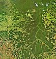 The Xingu River in Brazil captured by Envisat ESA228660.jpg