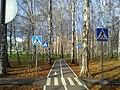 The bicycle path in the central park. October 2013. - Велосипедная дорожка в парке. Октябрь 2013. - panoramio.jpg