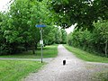 The cat path - geograph.org.uk - 1288665.jpg