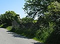 The ruins of Pen-terfyn cottage - geograph.org.uk - 1332968.jpg
