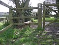 The stile at St Giles - geograph.org.uk - 761397.jpg