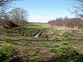 The superbridleway turns into a bog - geograph.org.uk - 1226016.jpg