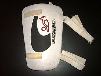 Cricket clothing and equipment - A thigh pad, worn by batsmen