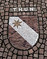 Thun Shield.jpg