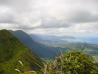 Koʻolau Range - Image: Top Koolau Range