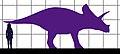 Torosaurus-human size.JPG