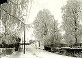 Tottinkatu in the winter.jpg