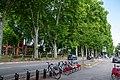 Toulouse Allée de Brienne.jpg