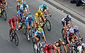 Tour de France 2010-20eme etape.jpg