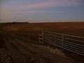 Towton, battlefield walk 2.JPG