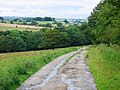 Track from Hamsterley Riding School - geograph.org.uk - 501996.jpg