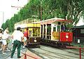 Trams at Seaton.jpg