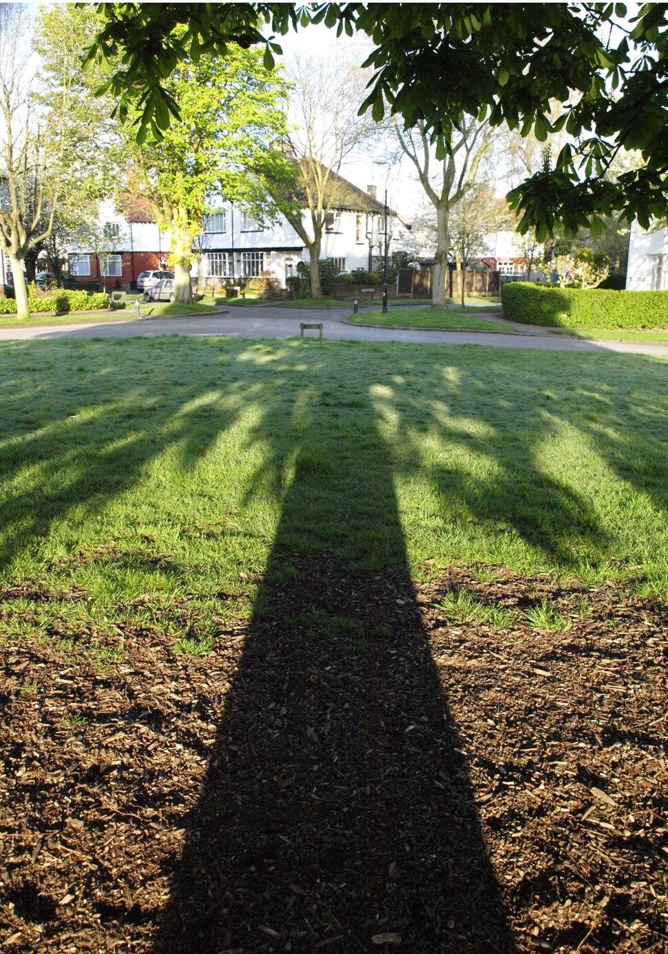 Tree shadow Chorltonville