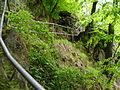 Treppen Rabenau.JPG