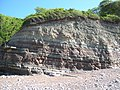 Triassic Sedimentary Strata Somerset 1.jpg